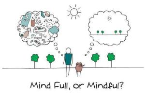 meditation mindfull