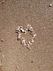 Heart pic found at park
